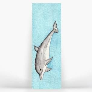 Delfín juguetón